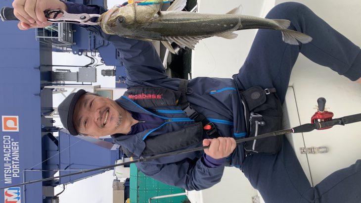 4月24日(水)シーバス午前便釣果